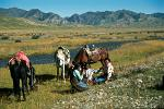 Tibetan women taking a break from herding yaks, Sangke Grasslands