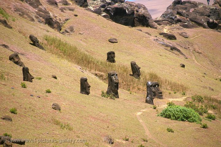Pictures of Chile- Rapa Nui- Easter Island - moai at the slopes of Ranga Roa