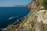 the wild coast between Riomaggiore and Manarola