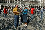 feeding pigeons on St. Mark's Square, (Piazza San Marco)