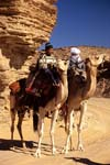 Jebel Acacus, men with their camels