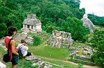 views from a temple top, Maya city of Palenque, Chiapas