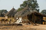 a rural scene, traditional huts